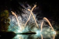 191105_Lions_Fireworks-0918.jpg