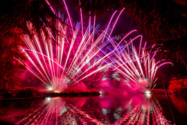 191105_Lions_Fireworks-0917.jpg