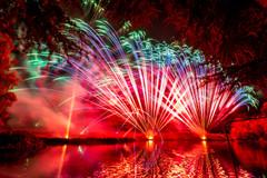 191105_Lions_Fireworks-0890.jpg