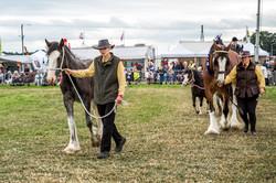 170624-Kelsall Steam Rally-1599