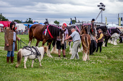 170624-Kelsall Steam Rally-1154