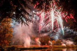191105_Lions_Fireworks-0911.jpg
