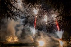 191105_Lions_Fireworks-0938.jpg