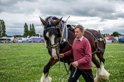 170624-Kelsall Steam Rally-1186