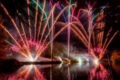191105_Lions_Fireworks-0898.jpg
