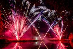191105_Lions_Fireworks-0924.jpg