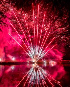 191105_Lions_Fireworks-0926.jpg
