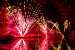 191105_Lions_Fireworks-0892.jpg