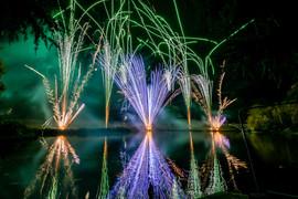 191105_Lions_Fireworks-0904.jpg