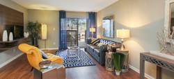 100-inverness-apartment-homes-apartments-for-rent-birmingham-al-35242-living-room_edited.jpg