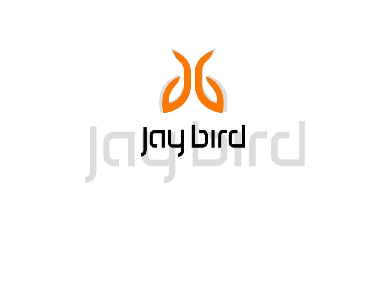 Jaybird Headphones_Page_01.jpg