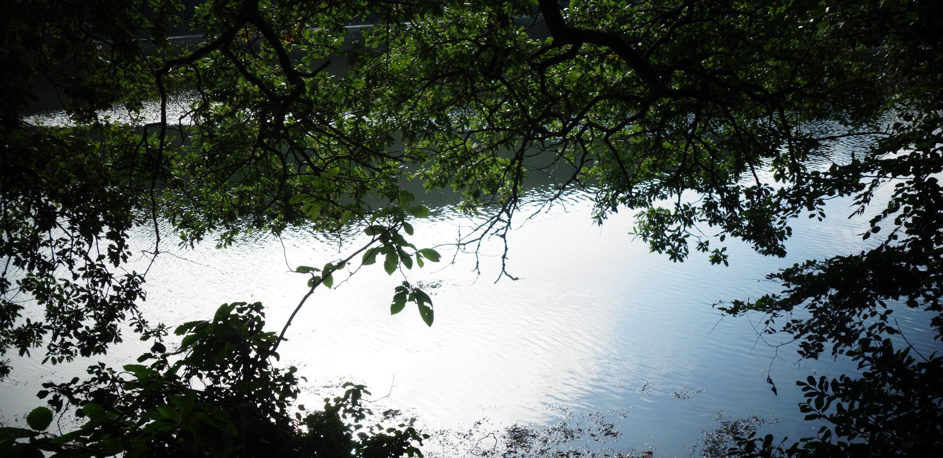 Camp is by the River Helford.JPG