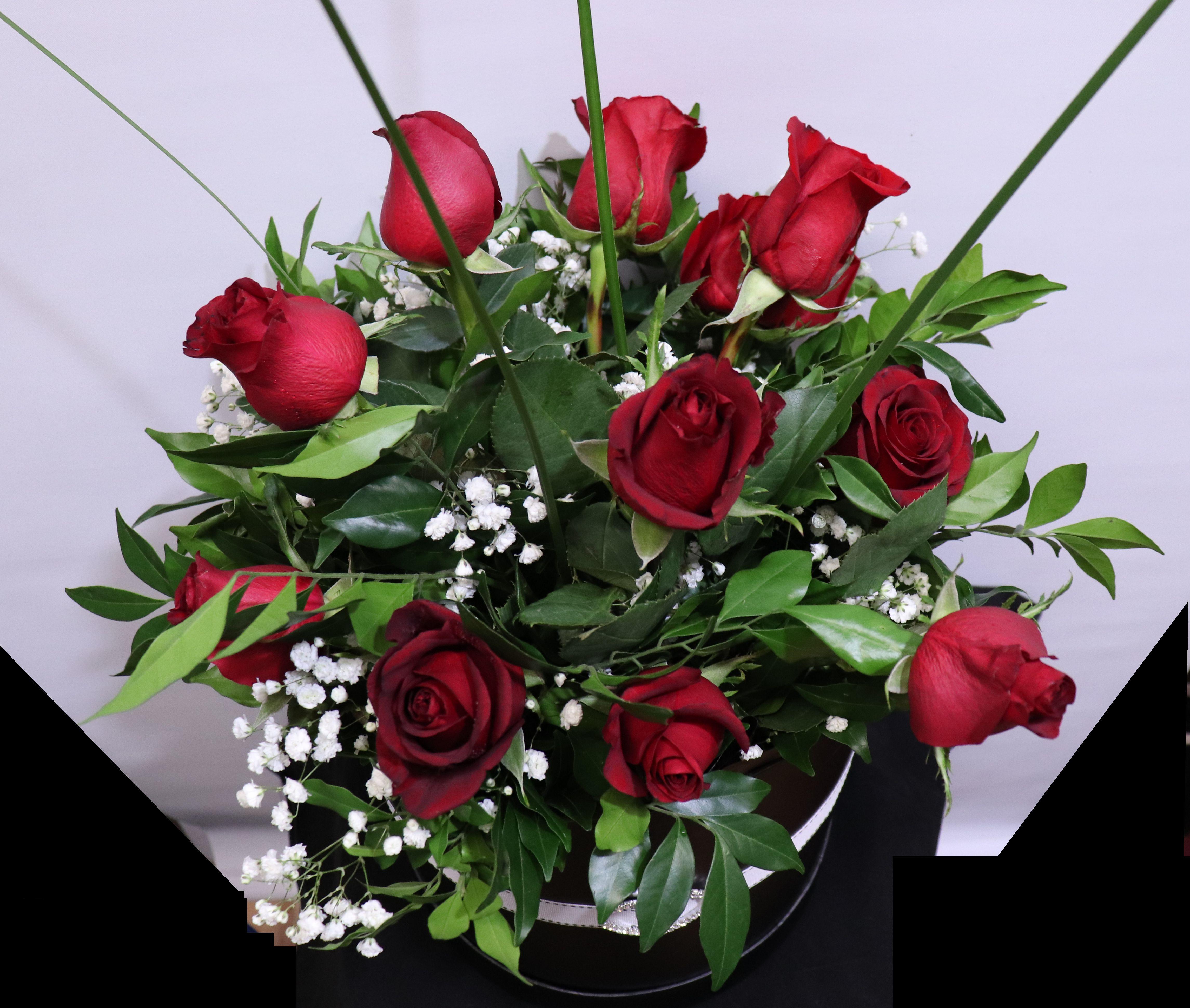 Hatbox Roses