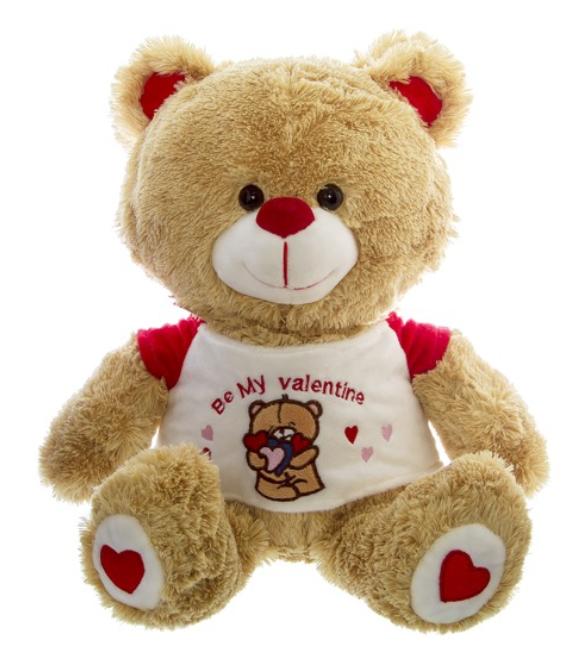 Roberto Bear Be My Valentine 32cm