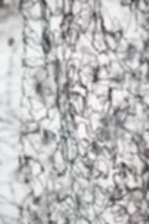 3dlace textile Eden Saadon Flexy Black
