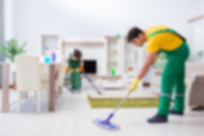 Canva - Cleaning Professional Contractor