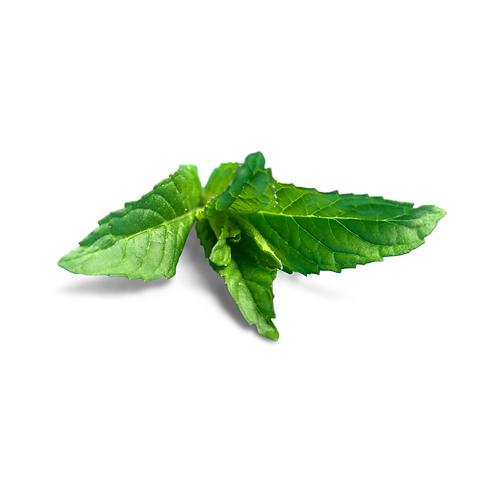 mint - each