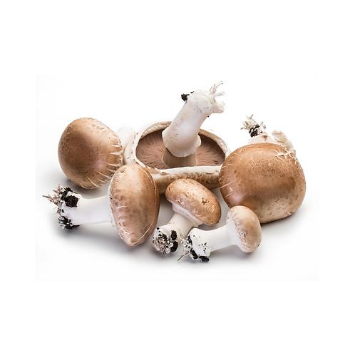 mushrooms - cups1kg