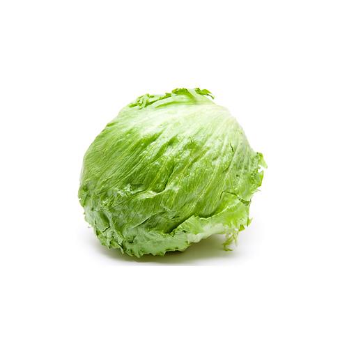 Lettuce - iceberg12