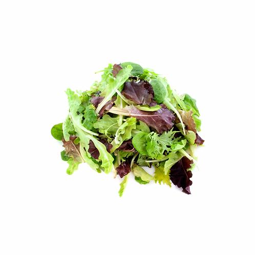 Lettuce Mesclun 1.5kg