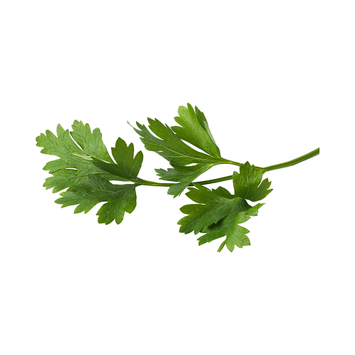 parsley - Italianeach