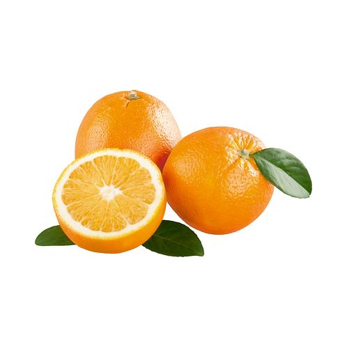 Oranges - Navel SPECIAL15kg (48)
