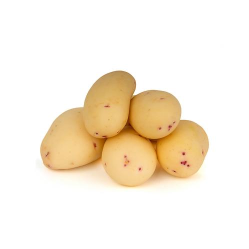 potatoes - Washed20kg