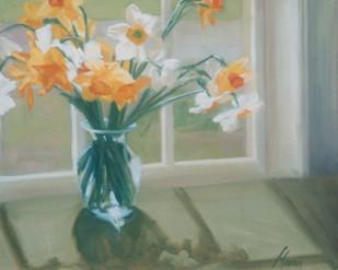 Daffodil Patterns