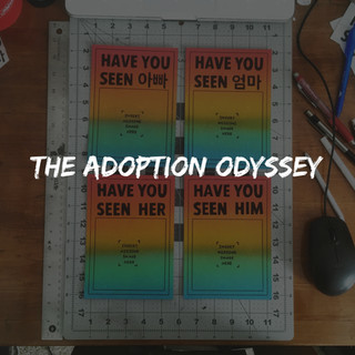 The Adoption Odyssey