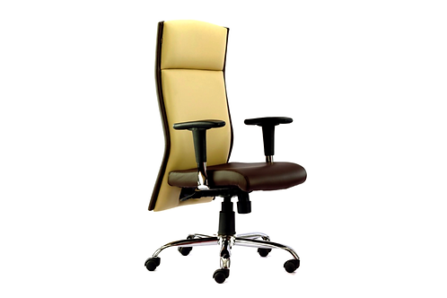 Plutus High Back Ergonomic Chair in Lime & Brown