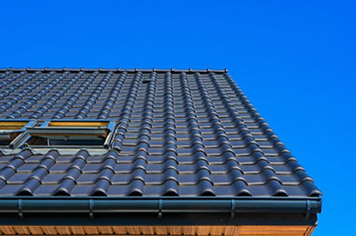 vertical-low-angle-closeup-shot-of-the-b