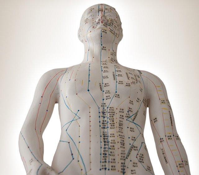 pd-kategorie-akupunkturmodelle(5).jpg
