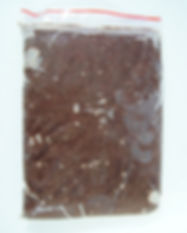 DSC08794.JPG