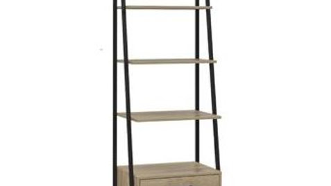 Brooklyn Ladder Shelf