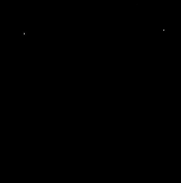 CAF---kruis-2-Black.png