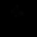 CRN Logo Black.png