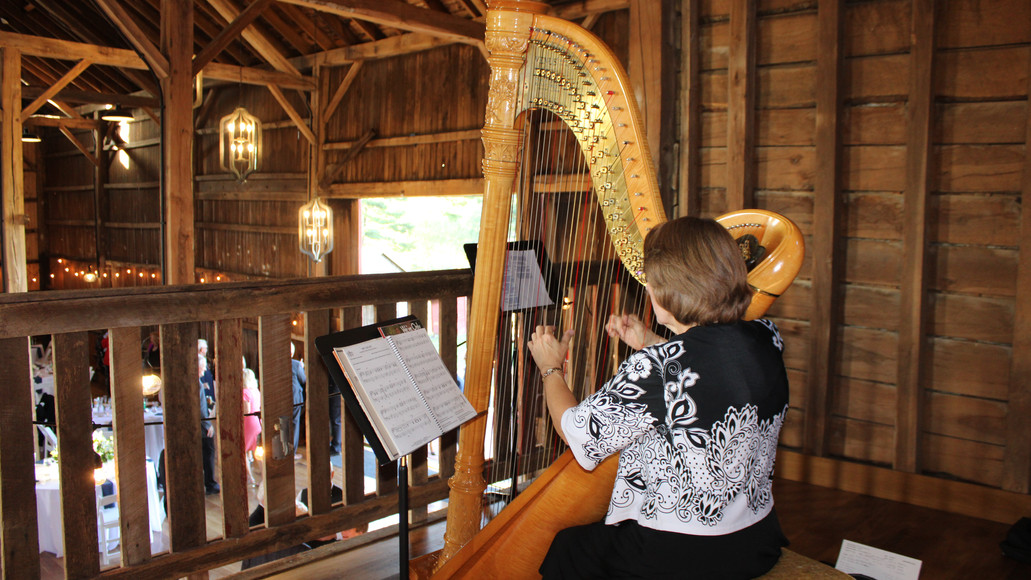 Harpist sits in the loft.