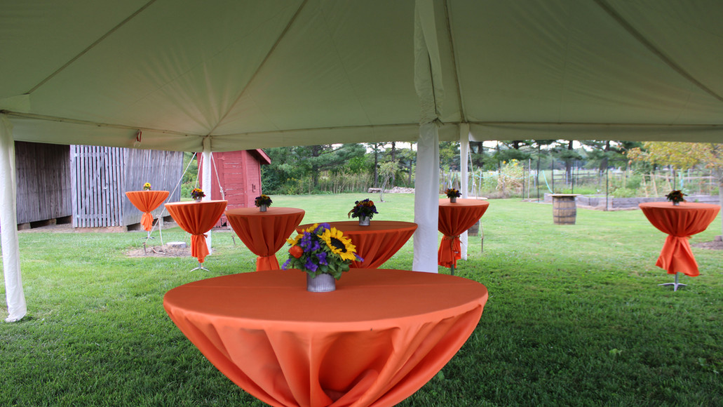 Beautiful tables for cocktails at Case Barlow Farm