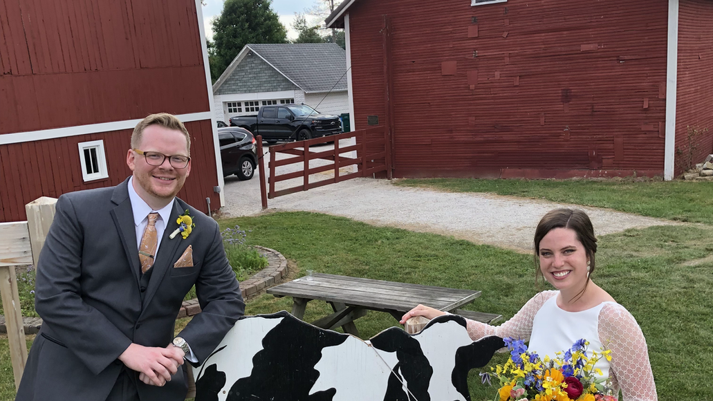 Blushing Bride and Groom pose in front of the cow