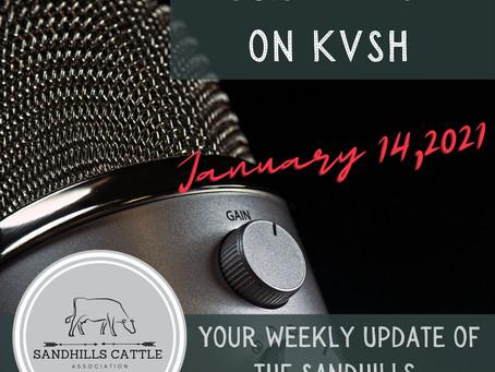 SCA Radio Spot Jan. 14, 2021