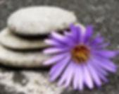 stone flower for emotive website .jpg