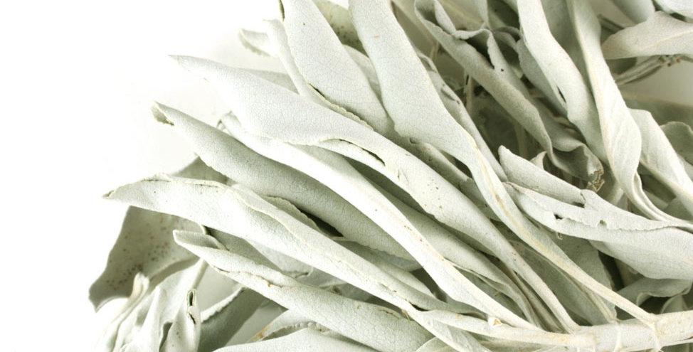 Sage Leaf Whole