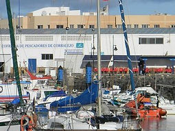 cofradia-pescadores-corralejo (1).jpg