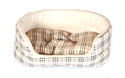 Custom Pet Beds