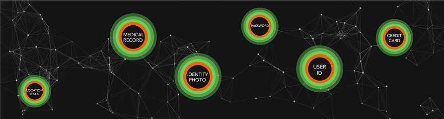 Smart Protected Personal Data Network 2.