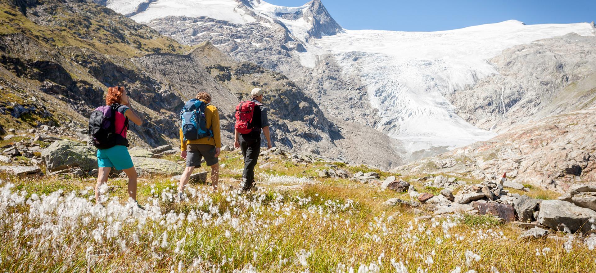 Gletscherweg Innergschlöß, Großvenediger