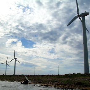 Tuulivoima ei tee Helsingistä hiilineutraalia, mutta silti sitä pitää rakentaa
