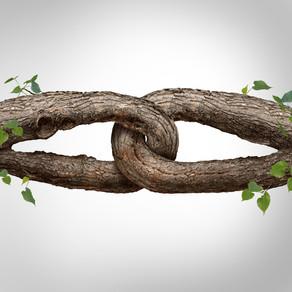 Building inner trust