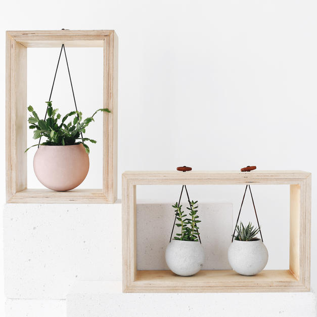 Swinging cactus pots