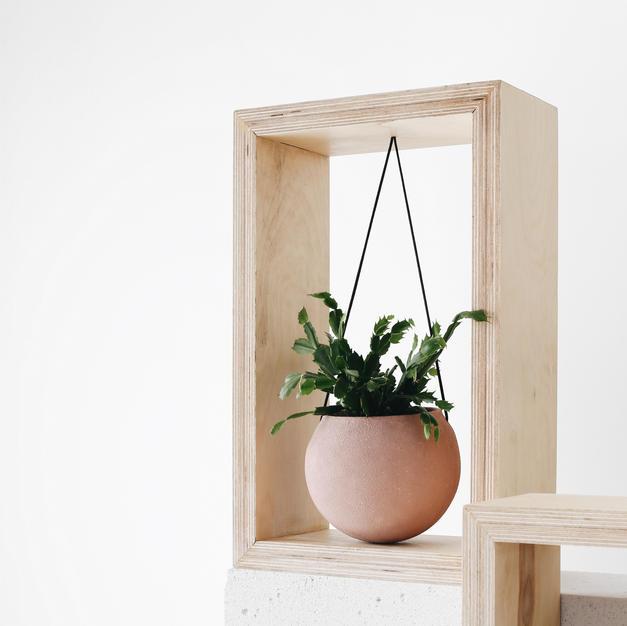 Pink cactus pot